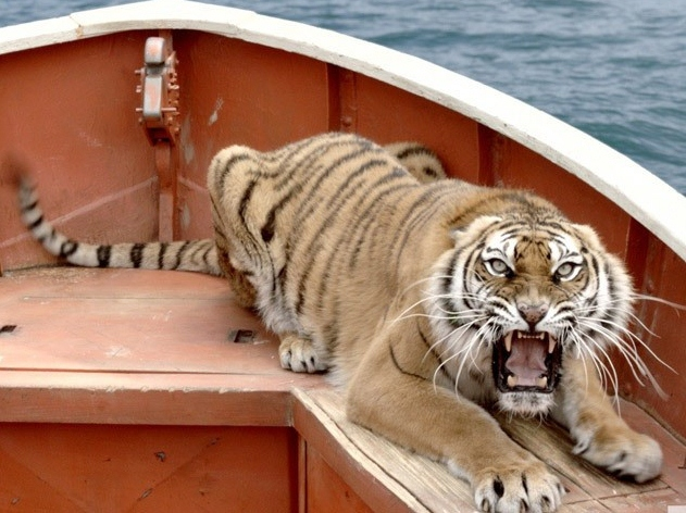 Life of pi mad betty for Life of pi main character