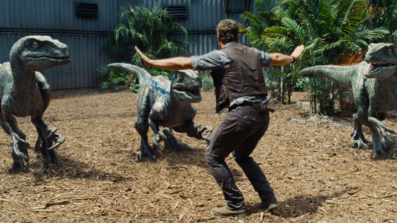 Jurassic World starring Chris Pratt as the dinosaur whisperer